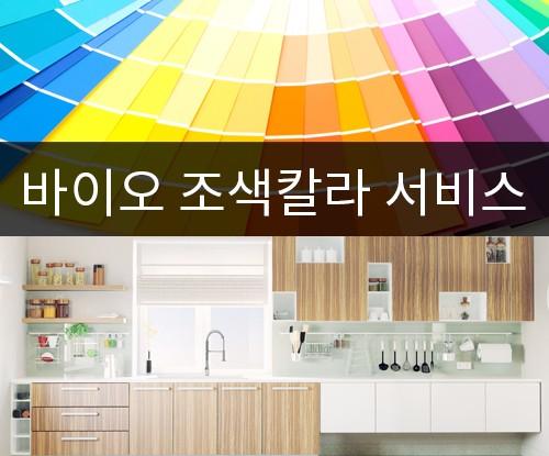 바이오 실리콘조색